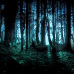 Holophonic 3D Sesler ile Korkmaya Hazır Ol !